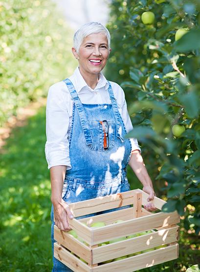 Praxisbeispiel Chargennummernverwaltung_orgaMAX_Apfelplantage_Fruchtsaft