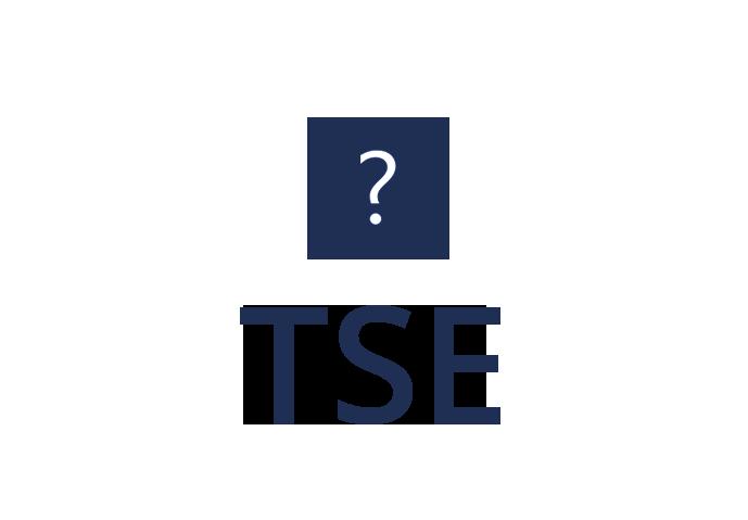 Fragen TSE